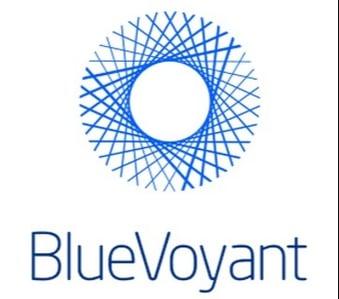 BlueVoyant_361x382