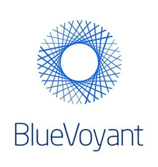 BlueVoyant_361x382.jpg